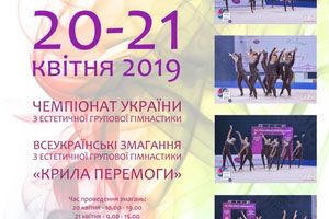 With the support of Idea Group, a children's aesthetic gymnastics championship was held in the Dnipro city